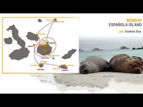"Galaven Galapagos Expedition Yacht Itinerary 8D ""A"""