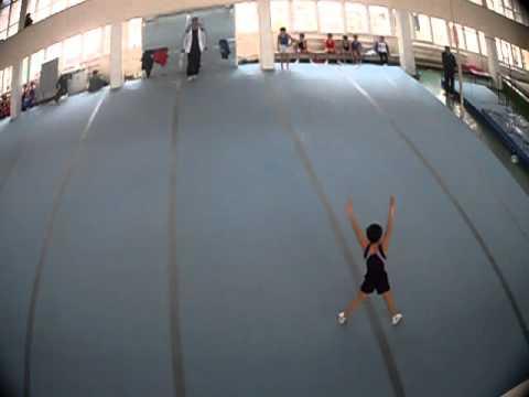 Hamlet Manukyan  Gimnastika