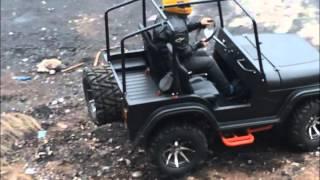 2016 new mini jeep willys 150cc 200cc