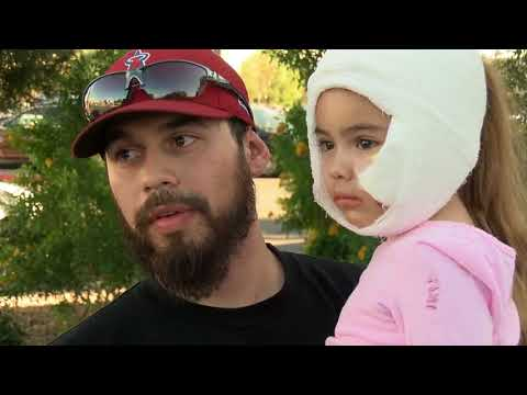 4-year-old Las Vegas girl recovering after vicious dog attack at grandfather's home