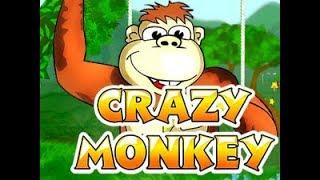 Самый крутой слот - Crazy Monkey slots