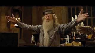 Гарри Поттер  меняет профессию!