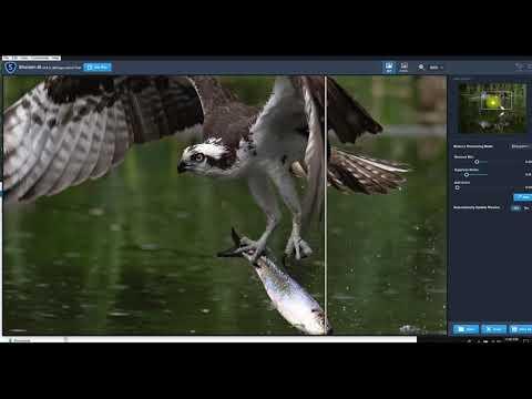 Editing A Photo Using Topaz Denoise AI & Sharpen AI
