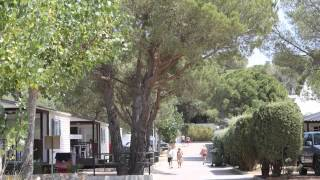 KIM'S CAMPING - PARCELAS DE CAMPING - CAMPING PITCH