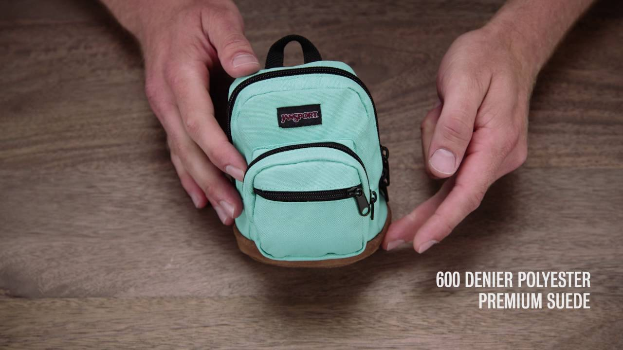 c015107a6ed JanSport Pack Review  Digital Storage Accessories - YouTube