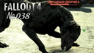 Fallout 4 s 38 Поселок домушников