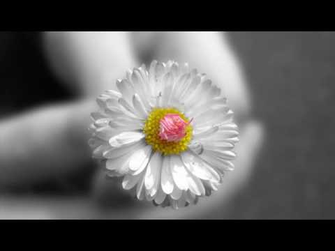 Emotional Sad Piano Music Touch Download and Royalty FREE