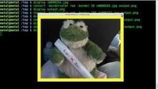 Imagemagick - Image Border - Tutorial - BASH - Linux
