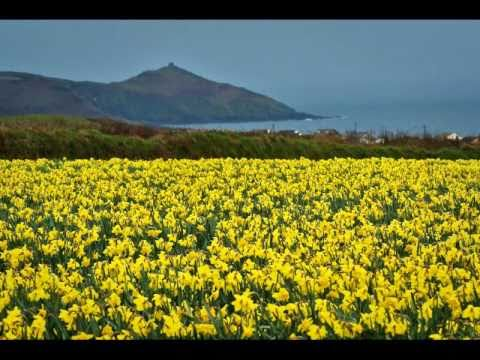 Daffodils by William Wordsworth, read by Kevin Geary