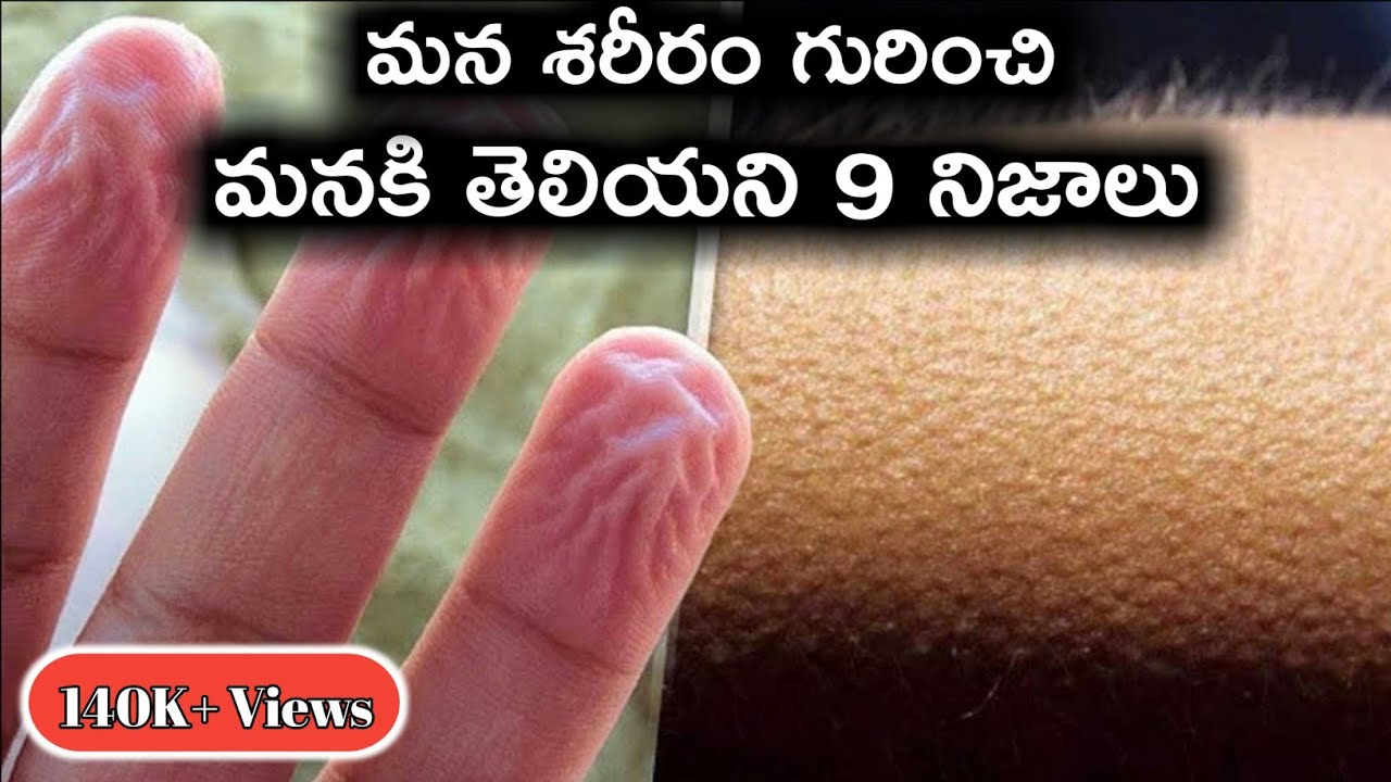 Top 9 Interesting and Unknown Facts About Our Body and Brain | Great Sparkle | Telugu Unknown Facts
