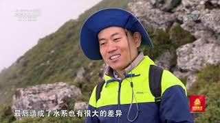 [远方的家]行走青山绿水间 秦岭主峰太白山| CCTV中文国际