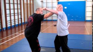 Rider Martial Arts 4 count defence Full Version