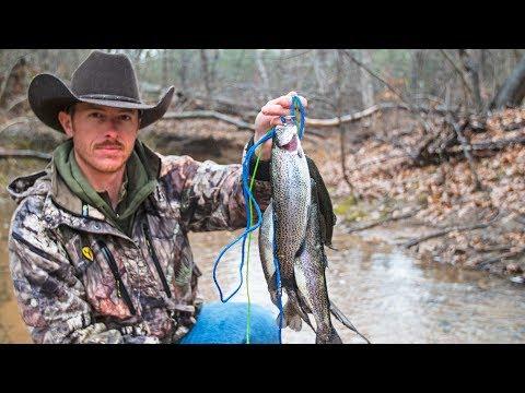 RIVER TROUT FISHING (Primitive Catch & Cook)