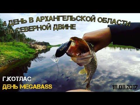 4 день в Архангельской области на Северной Двине