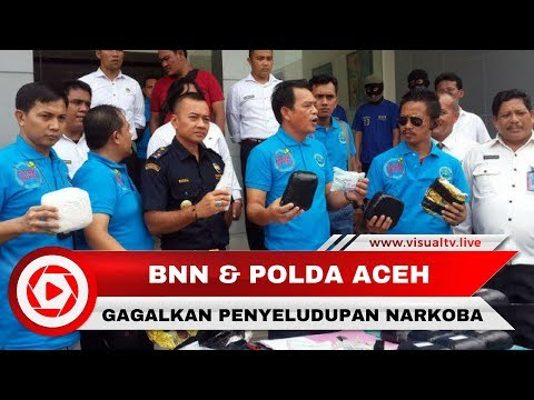 BNN Gagalkan Penyelundupan Narkoba Jaringan Internasional di Aceh