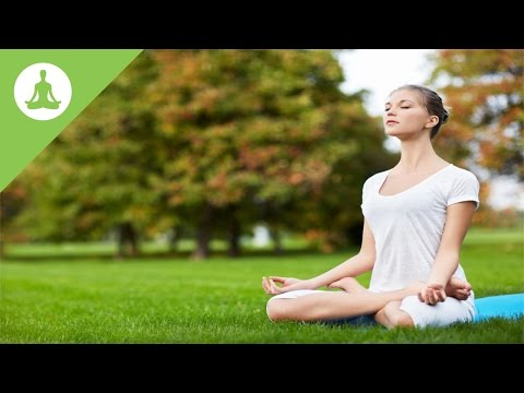 Yoga Music: Nature Sound, Meditation Music, Relaxing Music, Calming Music.
