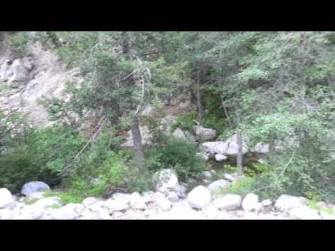 Fishermans Group Camp Deep Creek, San Bernadino National Forest
