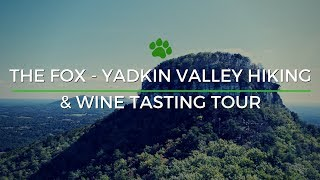 Happy Tails Tours - The Fox Inaugural Full Video