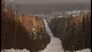Фотосессия с лосем в дикой природе. Жителей Урала позовут на лесные экскурсии(, 2017-01-12T08:21:37.000Z)