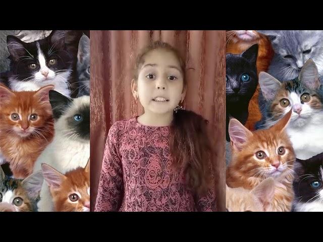 Изображение предпросмотра прочтения – АминаСитмеметова читает произведение «Сестре Шуре. Ах, как много на свете кошек!» С.А.Есенина