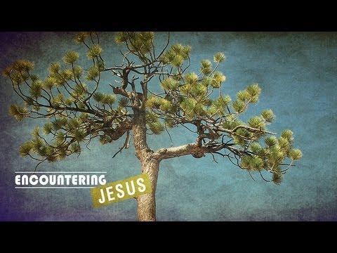 Encountering Jesus - Pastor Steve McKinney