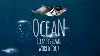 Ocean Film Festival Trailer 2016