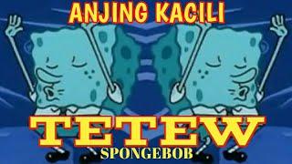 Goyang TETEW Anjing Kacili versi Spongebob TERBARU