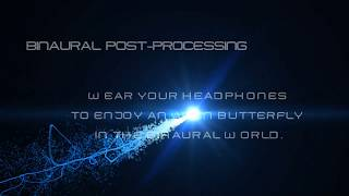 JUST A BINAURAL BUTTERFLY