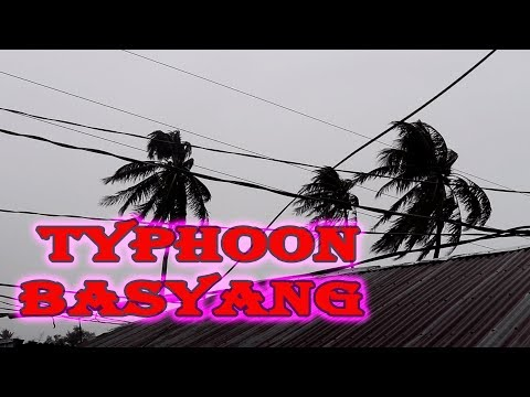 SCARY TYPHOON LANDED HERE IN BOHOL (Typhoon Basyang)