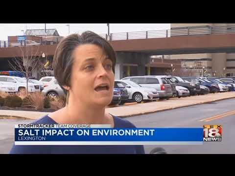 Salt Impact On Environment