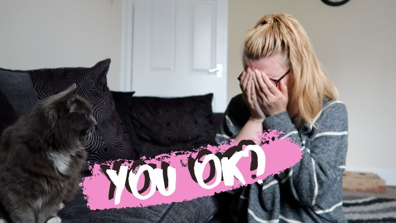 Cat Reacts To Me Fake Crying | Will She Care?