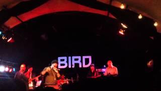 Dwele sho ya right at Bird Rotterdam