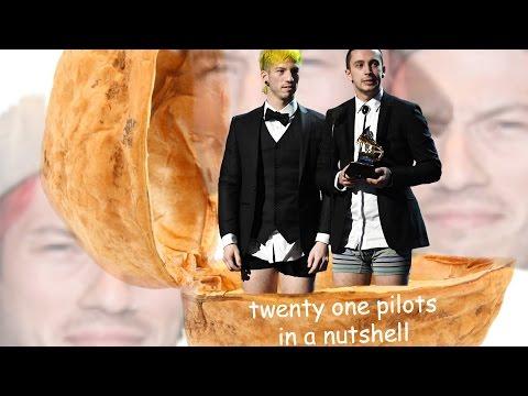 twenty one pilots in a nutshell