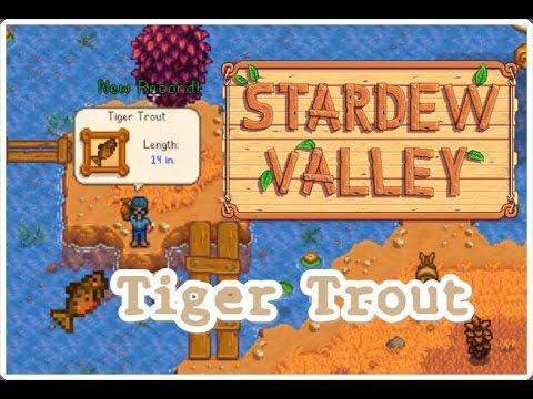 Rainbow Trout Stardew