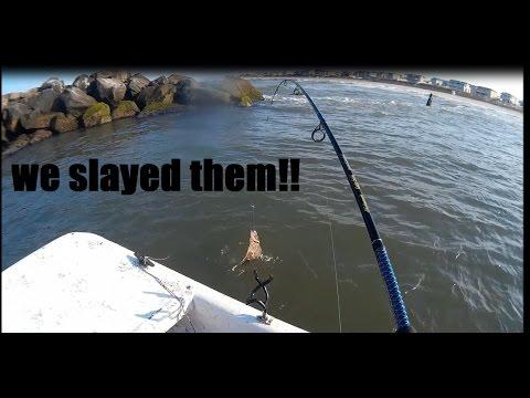 Flounder Fishing - Virginia Beach, Va (rudee Inlet)