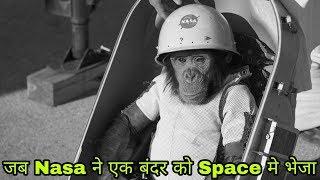 क्या हुवा जब Nasa ने एक बंदर ...