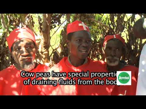 Explore Kasama, Zambia -Today With Zamtel