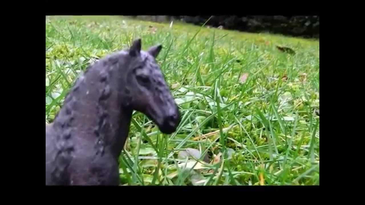Pferde Serie