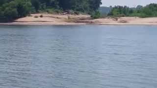 Falls of the Ohio: Sand Deposits on Goose Island