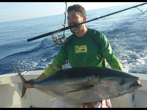 BLUEFIN TUNA. OFFSHORE FISHING. ISRAEL. JUNE 2017. דייג טונה