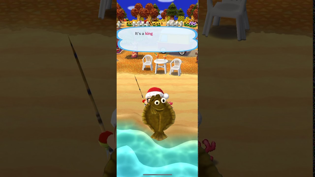I Caught A King Olive Flounder In Animal Crossing Pocket Camp Youtube ··· factory price the best uv stabilizer olive collection net trade terms fob,cif port shanghai there are 2 suppliers who sells jeju farm olive flounder on alibaba.com, mainly located in asia. animal crossing pocket camp