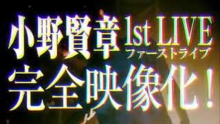 小野賢章 - NEEDLESS TO SAY
