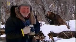 Гибель человека от медведя !!! Охота на охотника  National Geographic