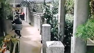 隣の神様 / 向田邦子