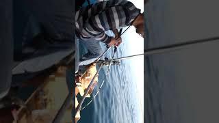 Akbük balık avı