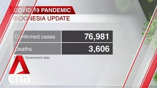 COVID-19: Indonesian President Jokowi calls for increased testing as cases near 77,000