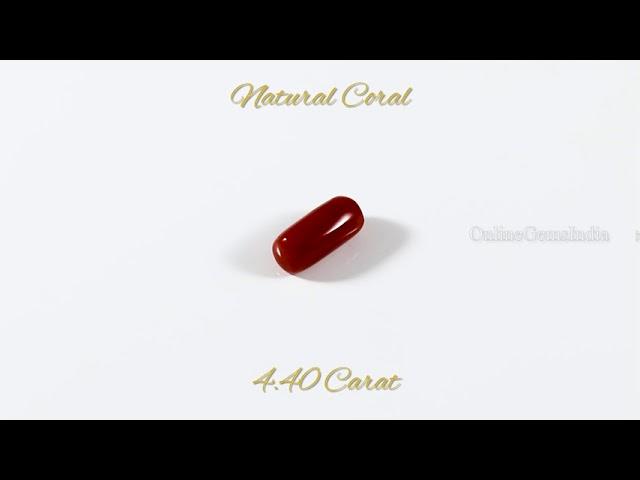 NATURAL RED CORAL (ITALIAN ) 4.40 CARAT