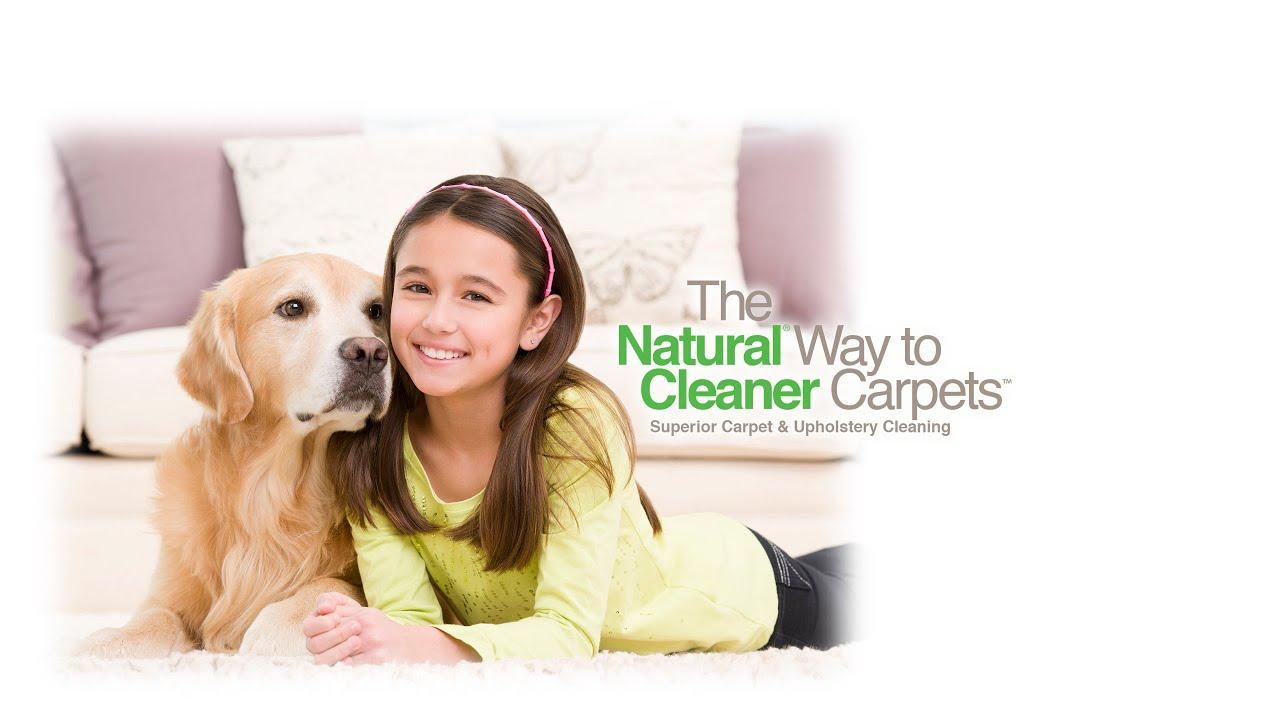 Tnt Chem Dry Best Carpet Cleaning Service Nashville