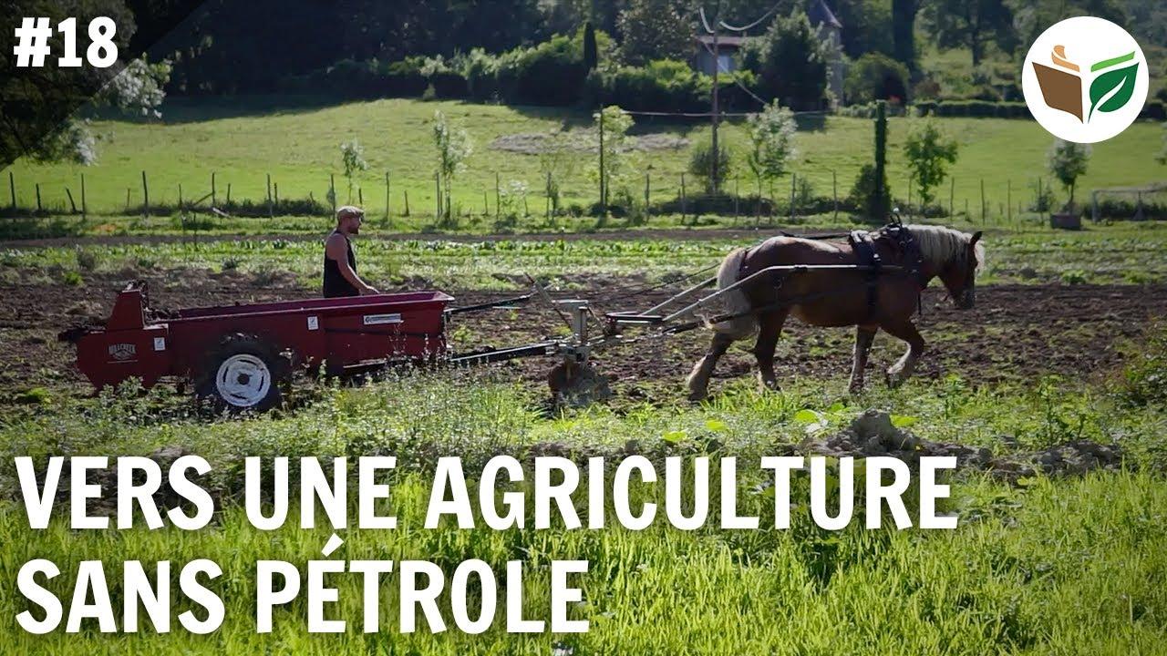 Vers une agriculture sans pétrole : la traction animale, les Jardins d'Illas - FTD #18