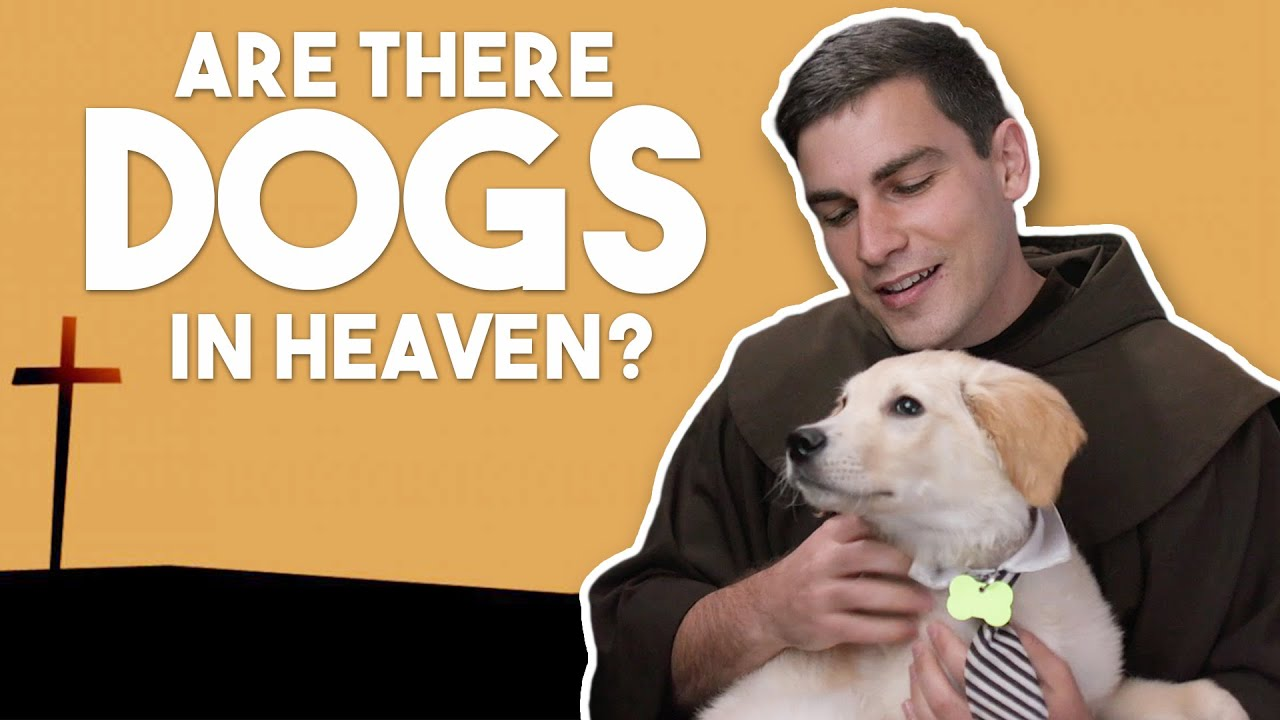 Did Christ Die for Dogs?